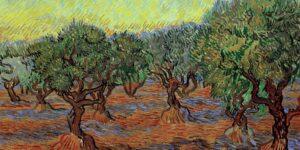 El olivar de Van Gogh