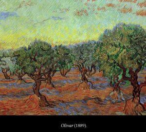 Olivar de Van Gogh